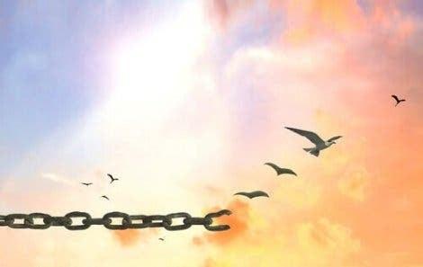 표현의 자유란 정확히 무엇인가?