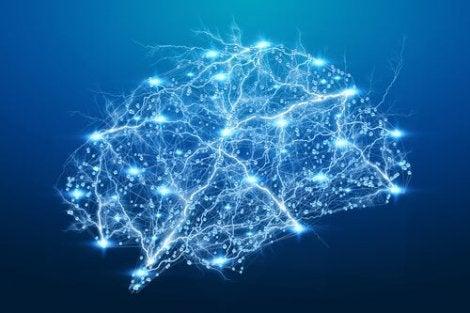 뉴런 동기화 증거