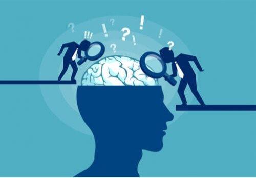 뇌에 관한 진실