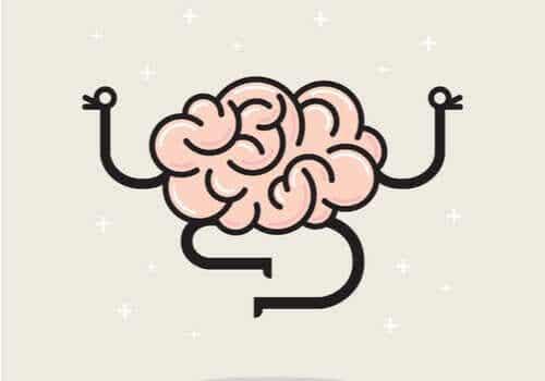 뇌는 통증을 느끼지 않는다
