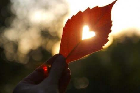 타코츠보 심근증: 유발 요인