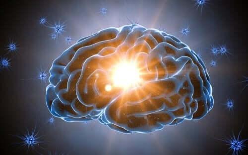 뇌는 왜 놀라움을 좋아할까?