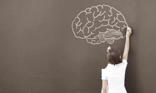 심리학자들이 WISC 테스트를 사용하는 이유