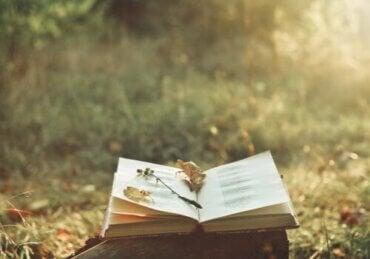시는 마음의 고통을 어떻게 덜어주는가