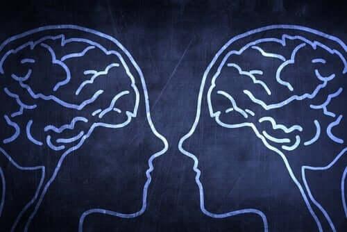 사회적 뇌의 진화적 이점
