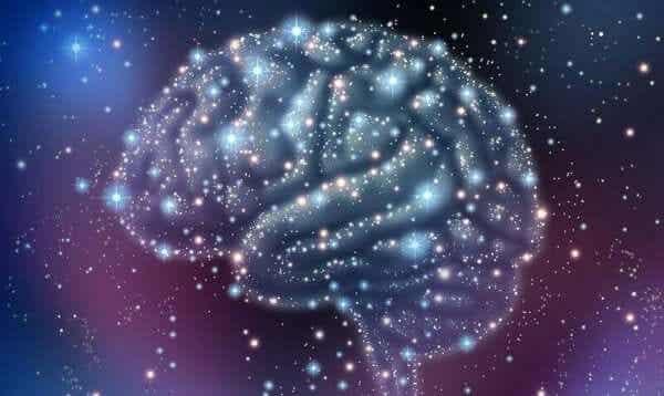 신경 전달 물질의 유형과 기능