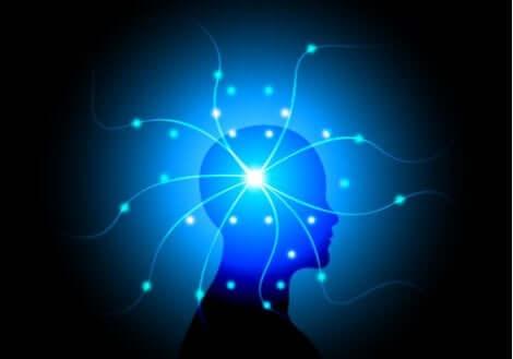 의식의 정신 병리학적 장애
