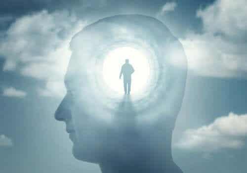 의식의 정신 병리학