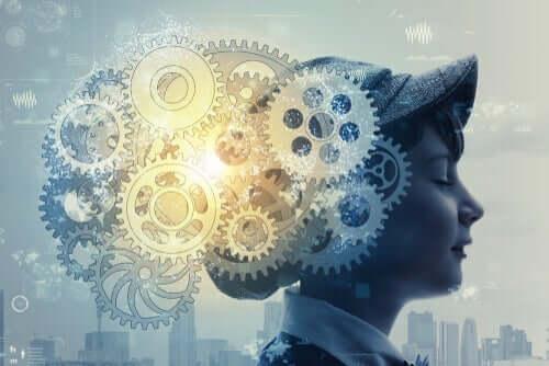 뇌 가소성 및 그 특성