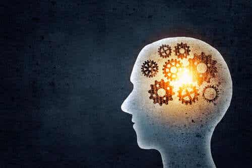 기억력 훈련을 통해 무엇을 얻을 수 있는가?