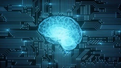 디지털화가 뇌에 미치는 영향