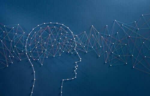 지능에 관한 세계 최대의 실험