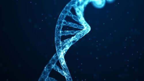유전자 변화 신경 가소성