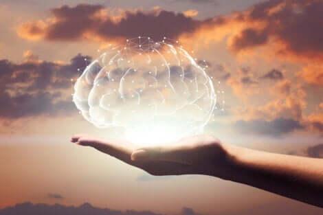 메릴린 보스 사반트: 기록상 IQ가 가장 높은 여성