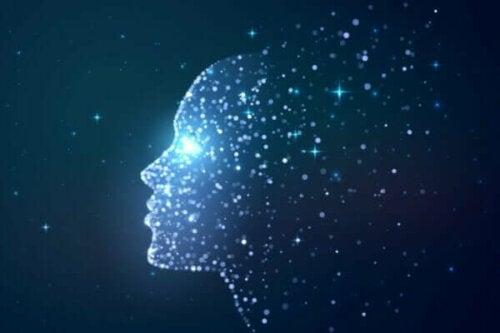 의식은 뇌의 산물일까?