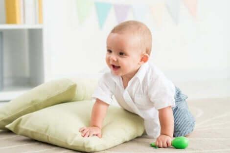 감각 운동기: 단계의 특성