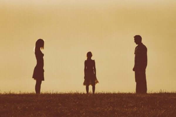 양육권 부모의 불화