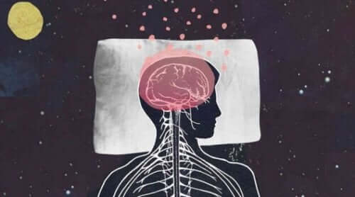 주름진 뇌 모양 방사형 아교 세포