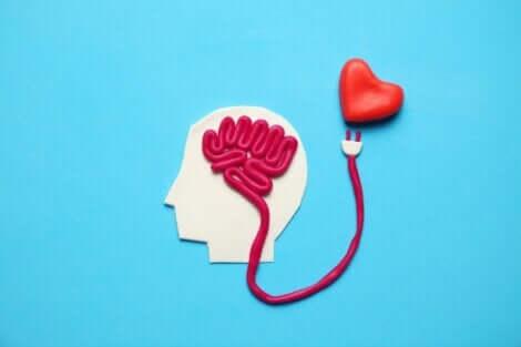 행복 호르몬은 무엇일까?