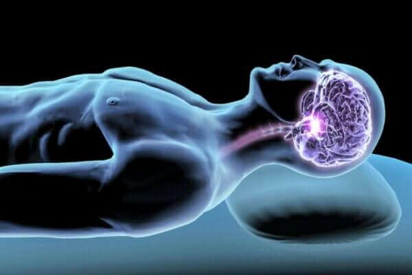 수면 호르몬: 밤 숙면을 위한 매개체