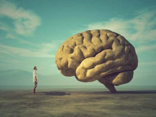 뇌-앞-의-남자