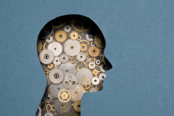 포렌식 신경 심리학: 정의, 목적 그리고 적용
