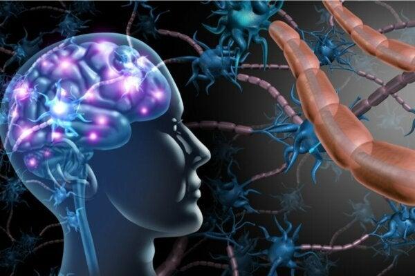 다발성 경화증과 ALS의 차이점